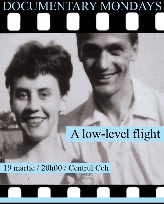 low-level-flightro.jpg